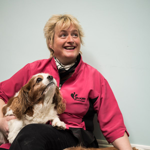 Yvonne Sadlier : Dog and Cat Groomer