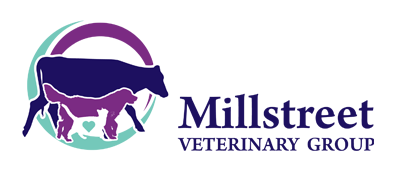 Millstreet Vet Group, Millstreet, Cork, Ireland