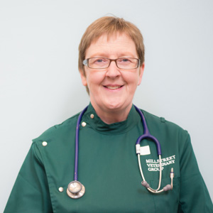 Mairead Wallace Pigott  MVB, MRCVS : Veterinary surgeon and Managing Partner